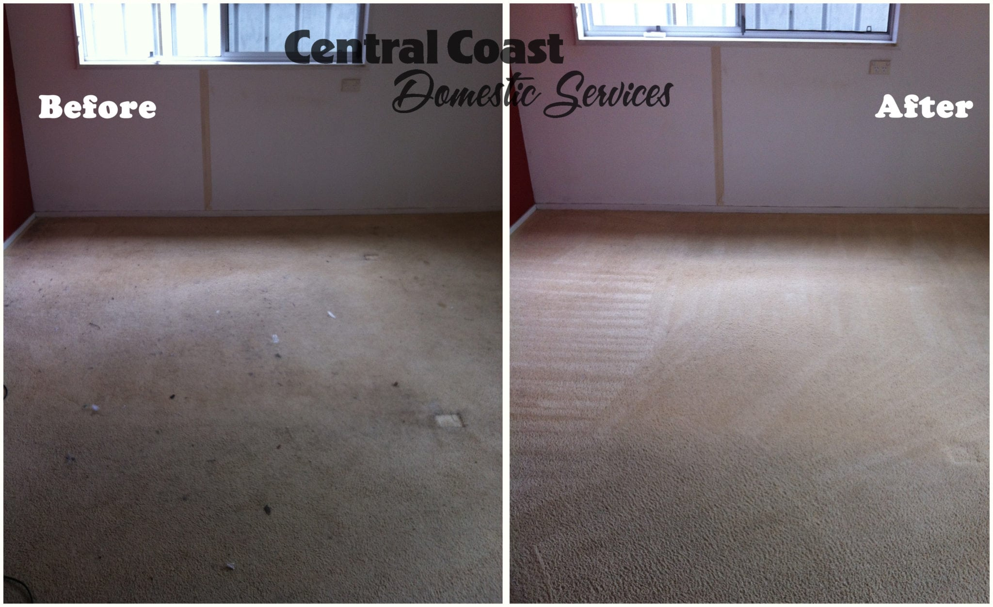 Carpet Cleaning Before & After Bedroom
