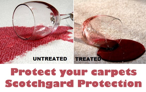 Scotchgard Protection Carpet Cleaning