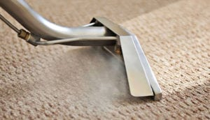 Steam Carpet Cleaning Central Coast